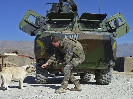 This is THE dog in Afghanistan I'm talking about. I still miss her.