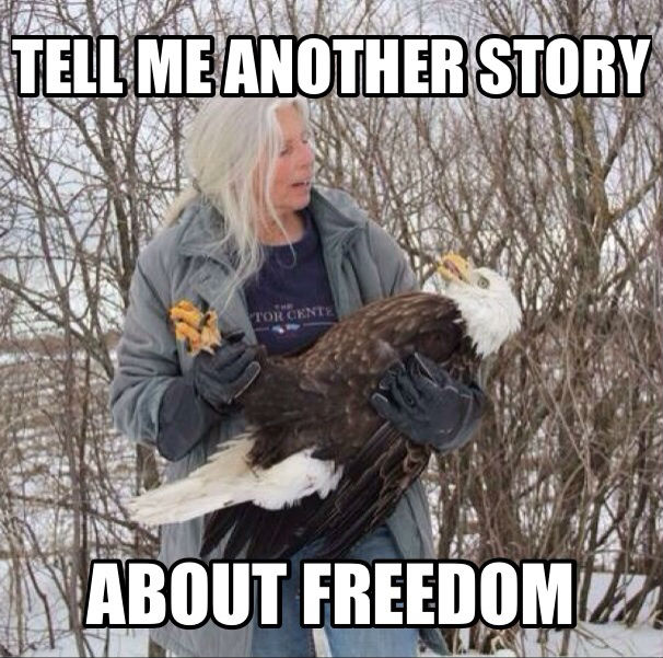Happy Independence Day - please tell us another story about freedom!