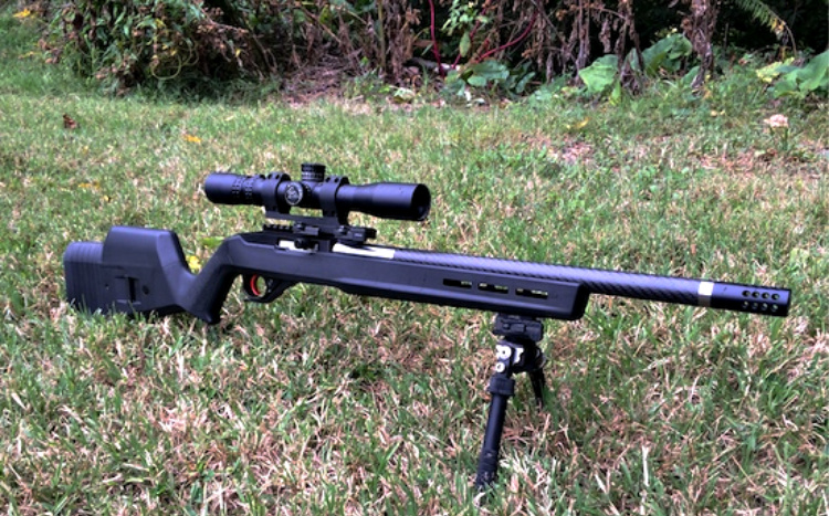 Magpul X22 with attached scope and bipod.