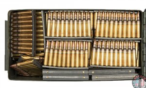 1,230 rounds of 5.56