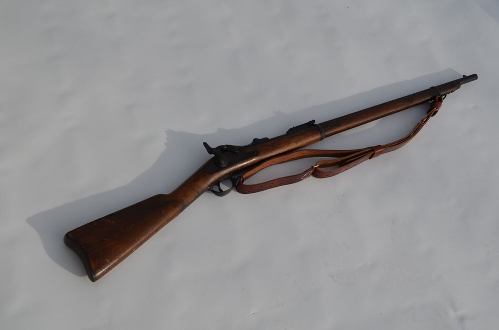 Image of the Springfield M1873