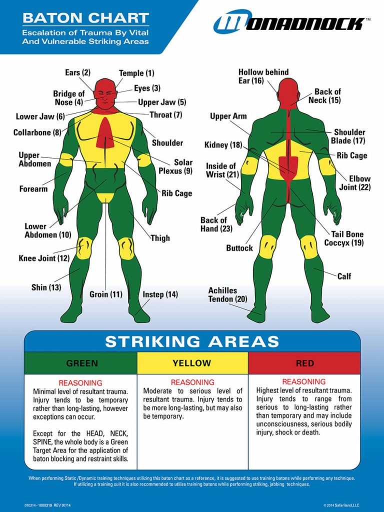 Baton strike areas - escalation of trauma by vital and vulnerable striking areas. Don't want to get your ass kicked? Have a less lethal option to resolve a problem.