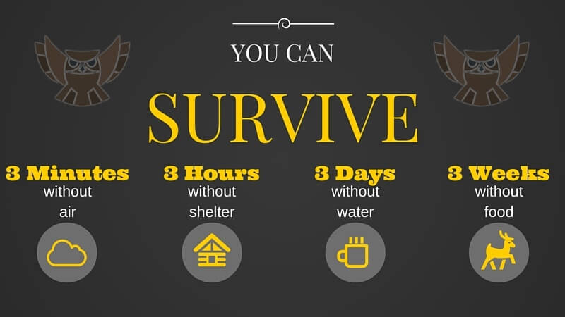 You can survive.