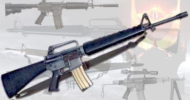 10 Horrifying Facts About the AR-15