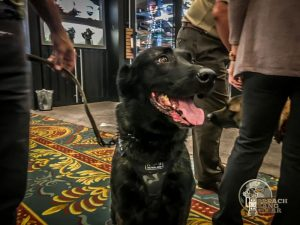 K9 Dogs of SHOT