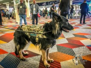 Patched SHOT Show K9