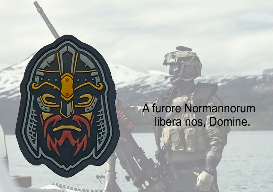 Viking morale patch - viking helmet