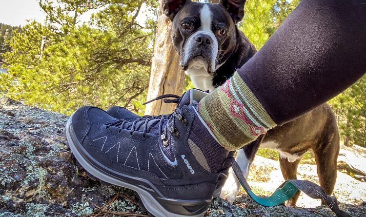 Lowa warm weather hiking boots - cute dog hiking partner.