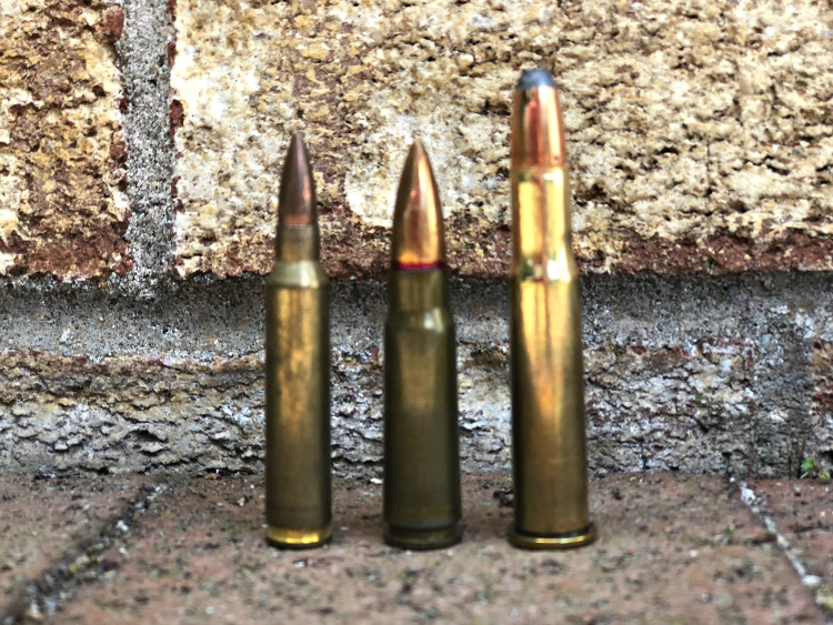 Popular defensive rifle rounds: 5.56mm, 7.62x39mm, and .30-30.